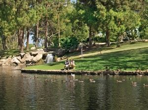 TeWinkle Park