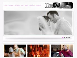 The Dj Professional Entertainment Services