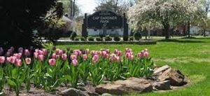 Cap Gardner Park