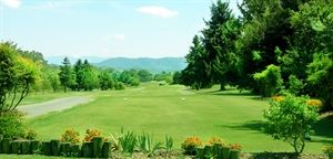 Baneberry Golf & Resort