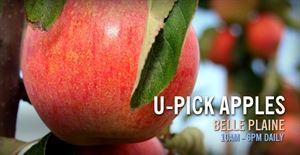 Emma Krumbee's Orchard & Farm