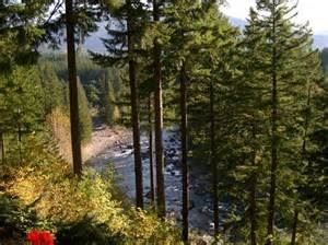 The Roaring River Bed & Breakfast