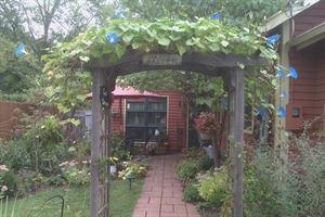 Virginias Garden