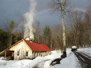 Mount Pleasant Sugarworks
