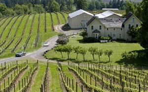 David Hill Vineyard Winery