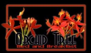Orchid Tree Bed & Breakfast