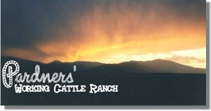 Pardners Working Cattle Ranch