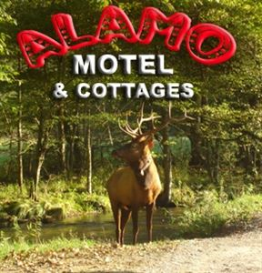 Alamo Motel & Cottages