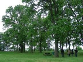 Cox's Point Park