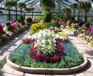 Niagara Parks Greenhouse