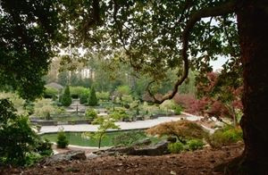 The Sarah P.Duke Gardens
