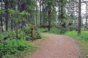 Swan Lake Provincial Park