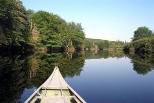 Musquodoboit River Elderbank Access