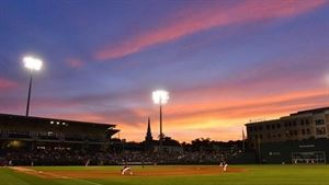 Greenville Drive/Fluor Field