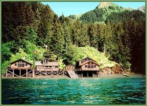 Alaska's Sadie Cove Wilderness Lodge