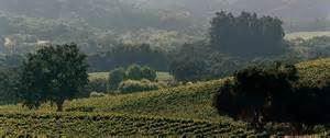 Bernardus Winery and Vineyard