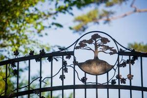 Eureka Springs Treehouse Business Retreats!