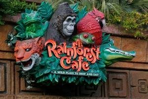 Rainforest Cafe - Anaheim