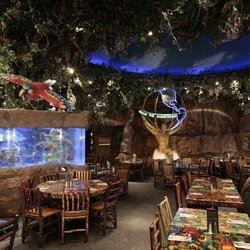 Rainforest Cafe - Chicago Downtown