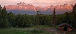 Alaska's Harvest