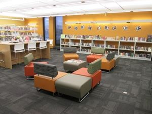 The Chicago Public Library's
