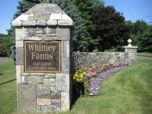 Whitney Farms Golf Course