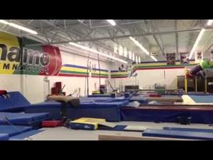 Dynamo Gymnastics And Playzone