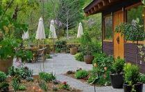 Linden Gardens & Frog City Café