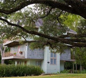 Abigaile's Treehouse
