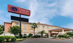 Comfort Suites -Humble