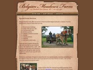 Belgian Meadows Farm - Horse Drawn Weddings