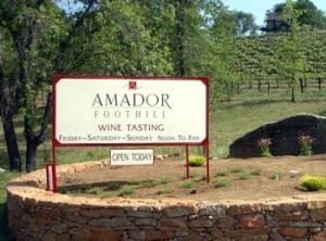 Amador Foothill Winery