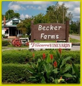 Vizcarra Vineyards At Becker Farms