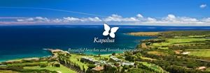 Kapalua Luxury Homes