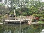 Toyko Garden