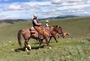 Badger Creek Ranch