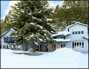 Tall Spruce House
