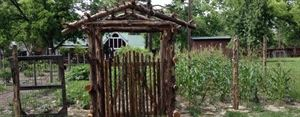 Charlane Plantation