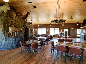 Bar N Ranch