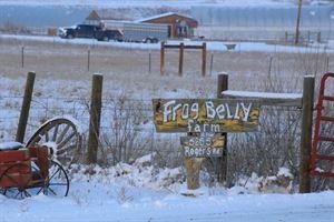 Frog Belly Farm