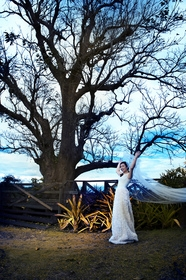 Eagle's Wing Ranch Weddings