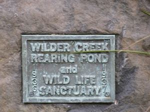 Wilder Creek Conservation Club