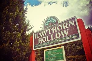 Hawthorn Hollow