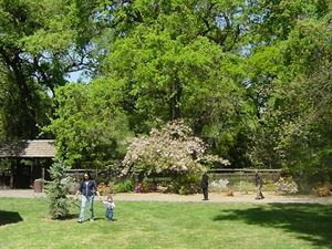 Mikey Grove Park & Japanese Gardens