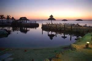 Amy Slate's Amoray Dive Resort