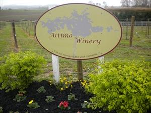 Attimo Winery