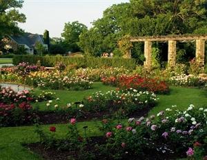 Boehner Botanical Gardens