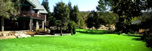 Granite Gardens