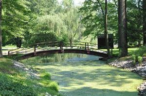 Springhaven Woods