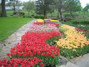 Gage Park's Reinisch Rose Garden